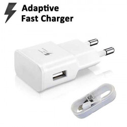 Genuine Charger